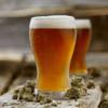 Kit Buckwheat Pale Ale – Cerveza Gluten Free